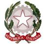 I.I.S. Vincenzo Simoncelli - Sora (Fr)  logo